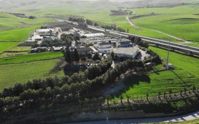 Termosigillatrice per Azienda Agricola Mulinello